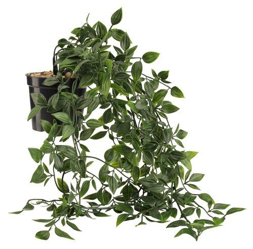 Umelá rastlina OLIVER závesný kvetináč