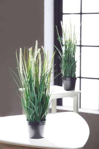 Planta artificial BENNY A48cm con maceta