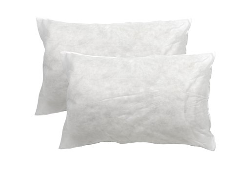 Pillow 300g HORNSTINDEN 2pk 48x74