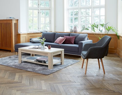 Coffee table HALLUND 60x120 cm oak