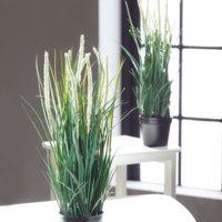 Kunstpflanze BENNY H48cm m/Topf