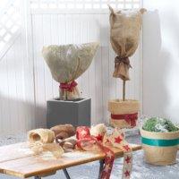 Pflanzen-Winterschutz JUTE 150x75 natur